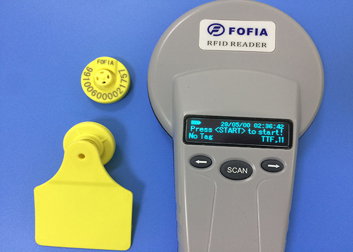 Electronic RFID Ear Tag For Animal Breeding And Slaughter Management